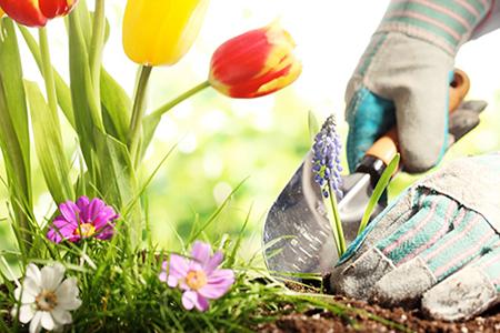 Bricolage & jardinage à Domicile